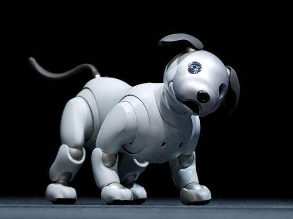 Aibo Robot